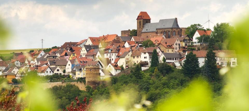 Wohnen in der Pfalz: Der Boulevard des Paradieses Drinnen