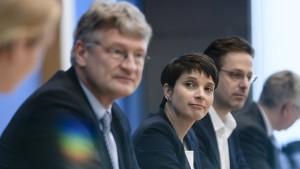 Meuthen kündigt Kampfkandidatur gegen Petry an