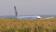 Ein Screenshot aus einem Video der russischen Nachrichtenagentur Tass zeigt die Maschine im Maisfeld.