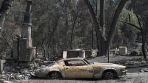 Feuer zerstören tausende Häuser