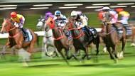 Was beeinflusst die Leistung der Pferde? Was war mit dem Wind? Dem Sattel? Der Festigkeit der Strecke? Der Lautstärke der Zuschauer? William Benter bezieht all das in seinen Algorithmus mit ein.
