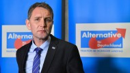 AfD-Spitze will Björn Höcke ausschließen