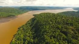 Indigene kämpfen für Amazonas-Schutz