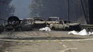 Erschütternd: Den Rettungskräften bietet sich am Sonntag in der Nähe der Stadt Canstanheira de Pera ein schreckliches Bild.