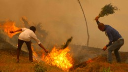 Nepal leidet unter schlimmen Waldbränden