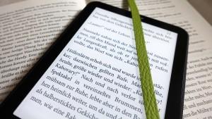 Vorerst keine ermäßigten Steuern auf E-Books