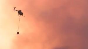 Waldbrände wüten in Neuseeland