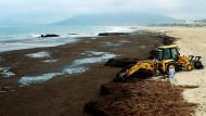 Mit dem Bagger gegen die Algen: Arbeiter am Strand von Tarifa.