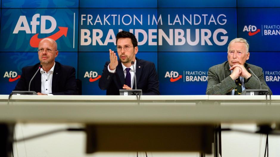 Dennis Hohloch (Mitte), Parlamentarischer Geschäftsführer der AfD Brandenburg, mit Andreas Kalbitz (links) und Alexander Gauland am Dienstag in Potsdam