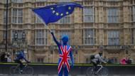 Ein Brexit-Gegner vor dem britischen Parlament in London.