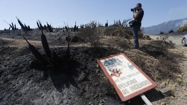 """""""Einen solchen Waldbrand hat es seit Jahren nicht mehr gegeben"""""""