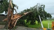 """Taifun """"Halong"""" fordert mindestens neun Tote"""