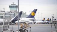 Wegen des Coronavirus bleiben Maschinen am Boden: Flugzeuge der Lufthansa am Münchener Flughafen