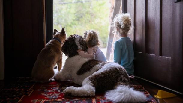 Was man als Familie bei Haustieren beachten muss