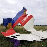 Wrackteil des abgeschossenen Flugzeugs der Malaysian Airlines im ukrainischen Shaktarsk im Juli 2014