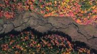 Drohnenflug zeigt die Farbenpracht des Herbstes