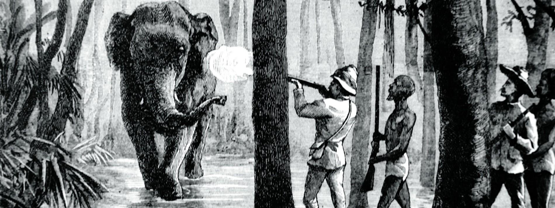 Orwell und der Schrecken des Kolonialismus