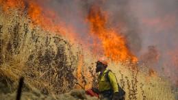 Waldbrand zerstört mehr als 100 Häuser