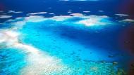 Wie viel kostet das größte Riff der Erde?