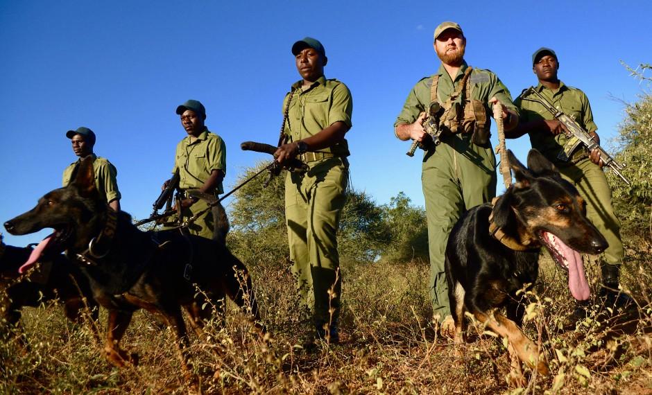 Martialischer Auftritt: Clemence Bryce (Zweiter von rechts) zieht mit seinen Wildhütern in den bewaffneten Kampf gegen Wilderer in Sango.