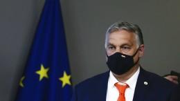 """""""Viktor, warum bleibst Du in der EU?"""""""