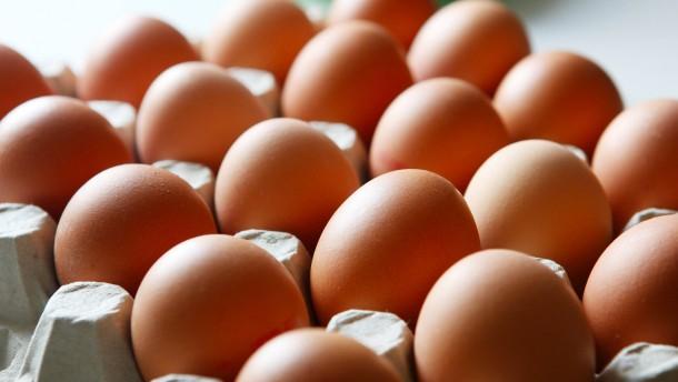 Woher stammen die Fipronil-Eier?