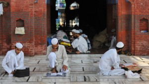 Ameisen, Allah und andere Götter