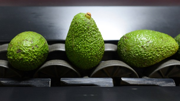 Essbare Beschichtung hält Früchte frisch