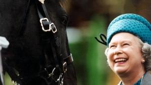 Ein Königreich für ein Pferd