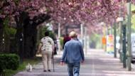 Blühende Pracht in der grauen Stadt: Für Pollenallergiker keine Freude.