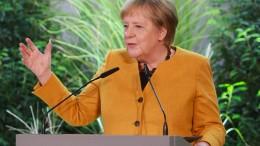 """Merkel versichert """"glasklare Überwachung"""""""