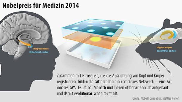 Nobelpreis für Erforscher des Gehirn-Navis