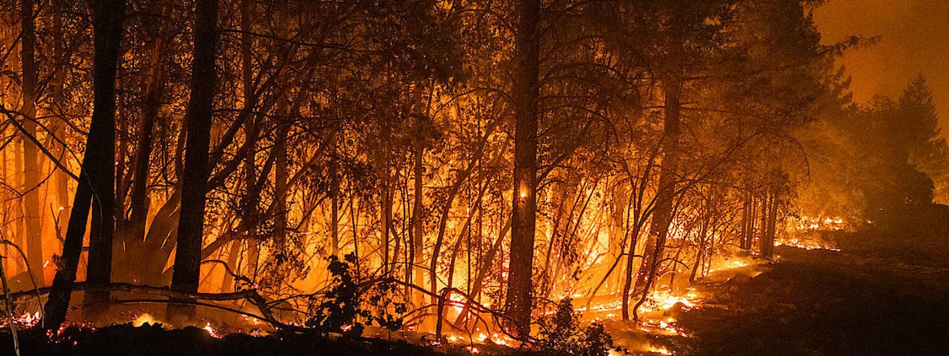 Kalifornien drohen neue Feuer