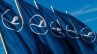 Will der Lufthansa den Wind aus den Segeln nehmen: Gewerkschaftsverband UFO fordert eine schnelle Einigung.