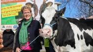 Im Land der Pferde: Barbara Otte-Kinast mit einer Kuh vor dem Landwirtschaftsministerium