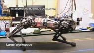 Ein Roboter mit viel Gefühl