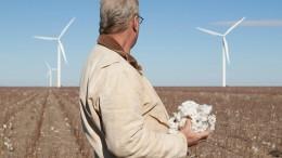 Der Königsweg zur Nachhaltigkeit