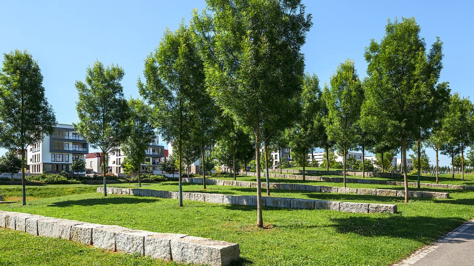 Mit Gefälle angelegt: Der Kätcheslachpark auf dem Riedberg