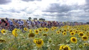 Tour de France: Contador oder Froome?