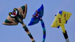Riesen-Drachen steigt in Frankreich auf