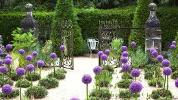 Jenseits von Claude Monets Garten