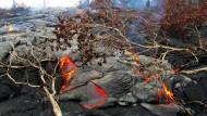 Lavastrom nähert sich Wohngebiet