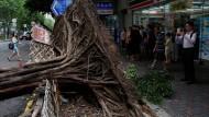 Mit voller Wucht traf der Taifun auf Hongkong und entwurzelte Bäume.