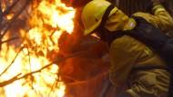 Internationaler Kampf gegen gewaltige Waldbrände