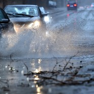 Wind statt Winter: Am Dienstag soll es in weiten Teilen Deutschlands viel regnen.