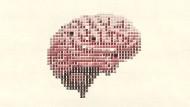 Nähern sich KIs dem menschlichen Gehirn an oder eher nicht?