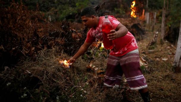 Bolsonaro und die Brandstifter