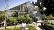 Die Familie Till hat das Gewächshaus ihrer Gärtnerei in Medingen bei Dresdner zum Wohnhaus umgebaut