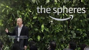 Der reichste Mann der Welt gegen den Klimawandel