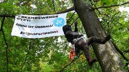Bäume für Riederwaldtunnel werden doch noch nicht gerodet